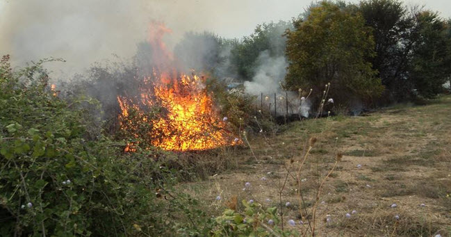 Πρέβεζα: Υπό έλεγχο η πυρκαγιά στο Μεσοπόταμο